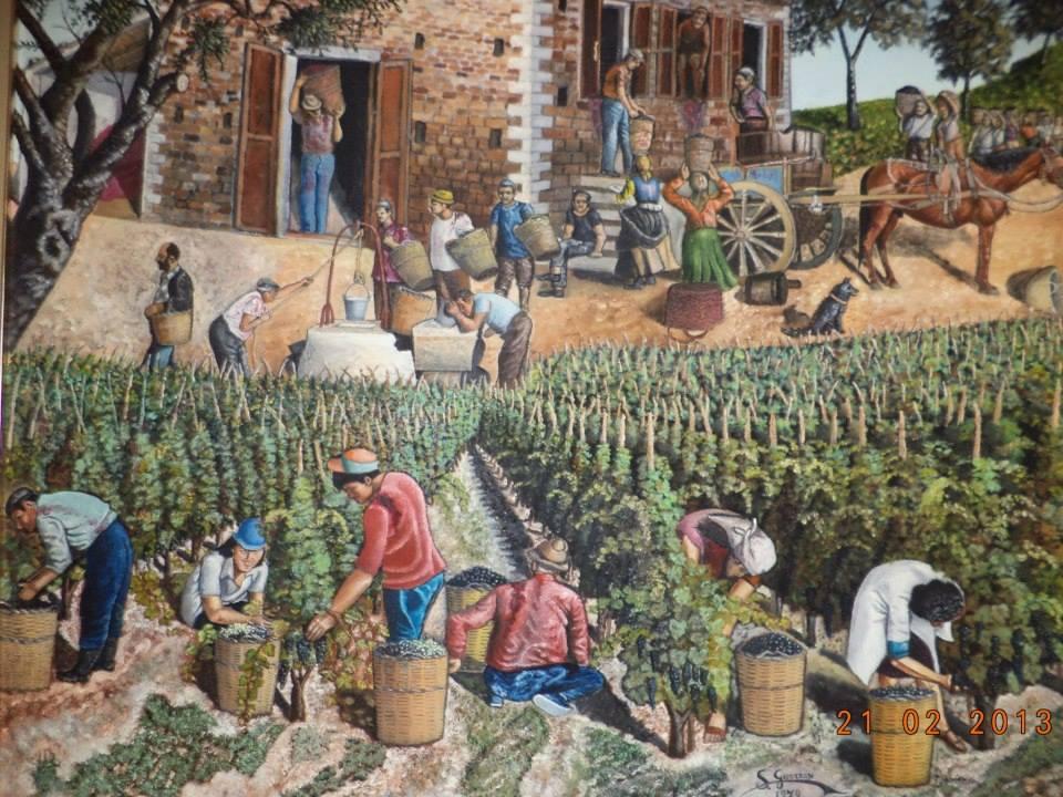 storia del vino sicilia marzamemi